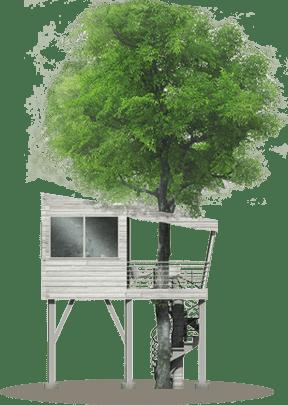 nuit dans les arbres